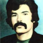 Shahid-Hafiz